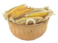 Dollhouse Basket of Corn - Product Image