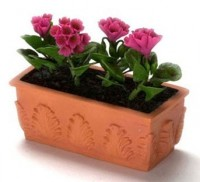 Filled Flower Box with Geraniums - Product Image