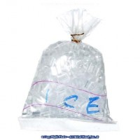 (§) Sale .20¢ Off - Dollhouse Bag of Ice - Product Image