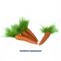 (§) Sale .30¢ Off - Dollhouse 4 pc Carrots - Product Image