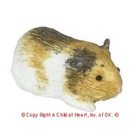 Dollhouse Guinea Pig - Product Image