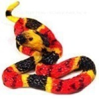(*) Assorted Dollhouse Snakes - Product Image