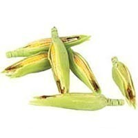 Dollhouse  6 pc Ears of Corn - Product Image