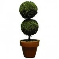 Dollhouse Small Round Topiary - Product Image