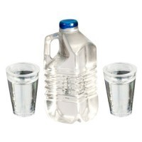 (*) 1/2 Gallon Water Bottle with Glass - Product Image