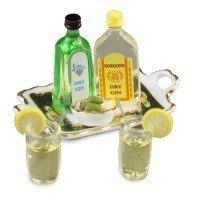 Dollhouse Gin & Tonic Set - Product Image