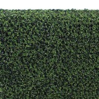 Dollhouse 1-1/4 in. x 12 in. Hedge - Product Image