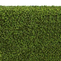 Dollhouse 3 in. Hedge - Spring Green - Product Image