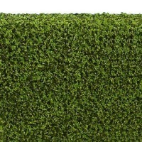 Dollhouse 5/8 in. Hedge - Spring Green - Product Image