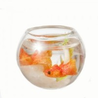 Filled Fish Bowl - Product Image