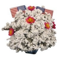 § Disc. $2 Off - Dollhouse Patriotic Plant - Product Image