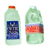 Disc. $1 Off - Dollhouse 1/2 Gallon Bottle Evian Water - Product Image