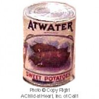 § Sale .30¢ Off - Dollhouse 1 lb. Can of Atwater Sweet Potatoes - Product Image