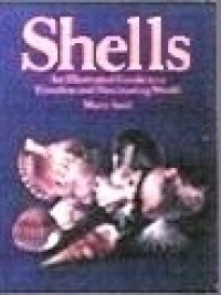 § Sale .30¢ Off - Dollhouse Shell Book - Product Image