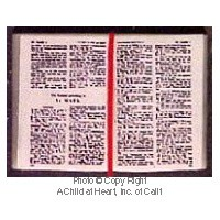 (§) Disc .60¢ Off - Dollhouse Open Bible - Product Image