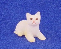 § Disc .60¢ Off - Dollhouse White w/Cream Points Kitten - Product Image