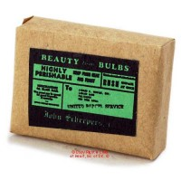 Dollhouse Blub Package - Product Image
