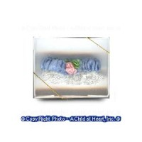 Dollhouse Wedding Garter in Box - Product Image