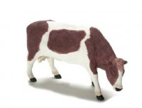 Dollhouse Black or Brown Bull - Product Image