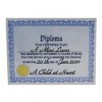 § Sale .40¢ Off - Dollhouse High School Diploma - Product Image