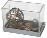 (**) Dollhouse Pet Mice in Cage - Product Image