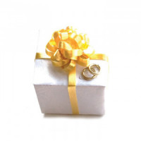 Dollhouse Wedding Gift - Product Image