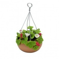 Dollhouse Hanging Strawberry Plant - Product Image
