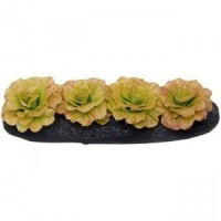 Dollhouse Red Leaf Lettuce Garden Bed - Product Image