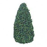 Four Dollhouse 2-1/2 in. Trees - Product Image