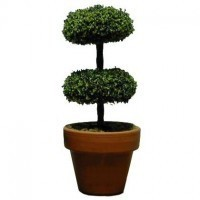 Dollhouse Large Mound Topiary - Product Image