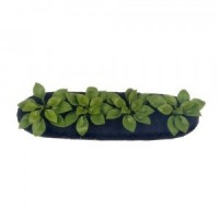 Dollhouse Spinach Garden Bed - Product Image