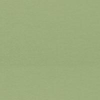 Dollhouse Carpet - Celery - Product Image