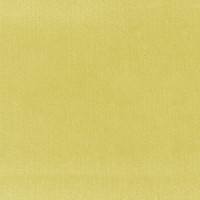 Dollhouse Carpet - Yellow - Product Image