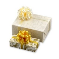 (**) Dollhouse 2 pc. Wedding Gifts - Product Image