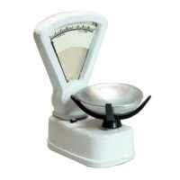 (**) Dollhouse Shop Scale - Product Image