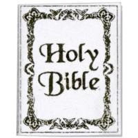 Dollhouse Holy Bible (White) - Product Image