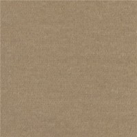 (*) Dollhouse Carpet - Latte - Product Image