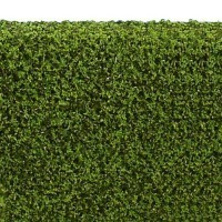 Dollhouse 1 in. Hedge - Spring Green - Product Image