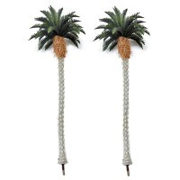 Tropical Palm Trees - Product Image