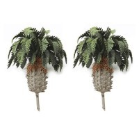 Sago Palm Trees - Product Image