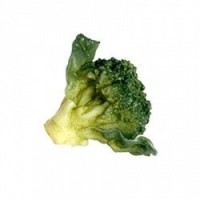 1 or 6 pc Dollhouse Garden Fresh Broccoli - Product Image