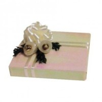 Fancy Dollhouse Wedding Gift - Product Image