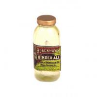 (*) Dollhouse Vintage Ginger Ale Bottle - Product Image
