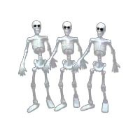 § Sale $1 Off - 3 Small Skeletons - Product Image