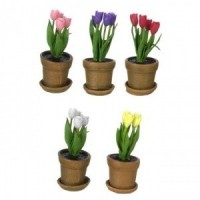 Sale $2 Off - Assorted Dollhouse Potted Tulips - Product Image