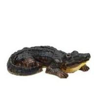 Dollhouse Miniature Alligator - Product Image