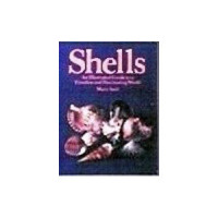(§) Sale .30¢ Off - Dollhouse Shell Book - Product Image